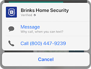 Apple-Business-Chat-Suggest-Brinks-Example-Call-to-Text